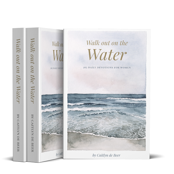 WalkoutontheWater_BookCover_large_PNG copy